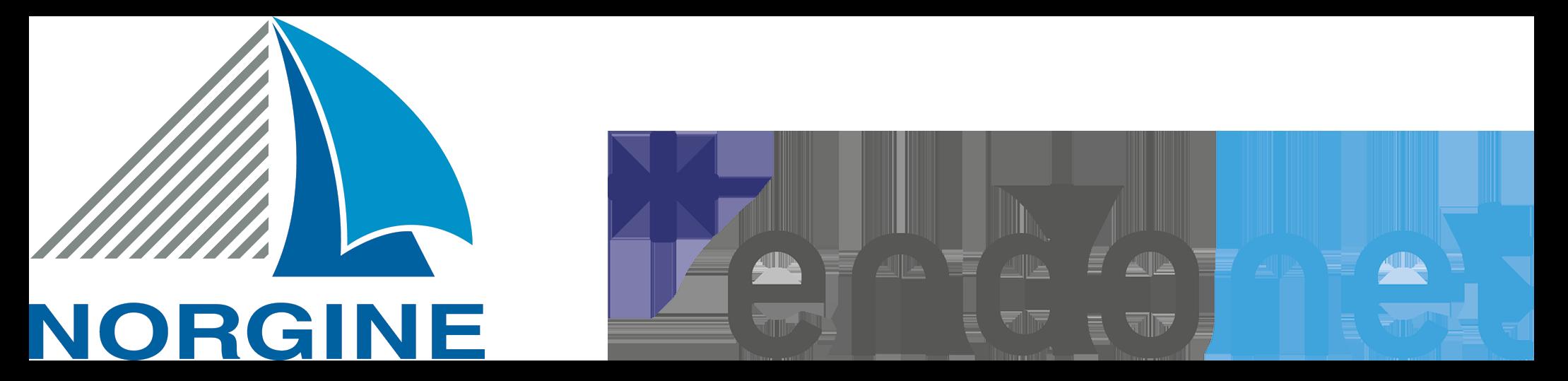 Logo Norgine